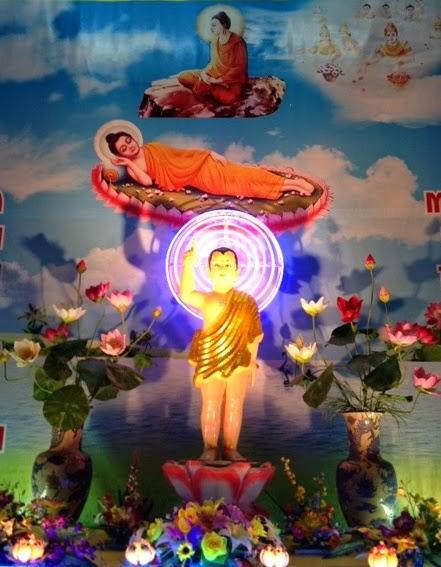 Contemplating the lotus shambhala meditation center of washington dc i am surrounded by lotus flowers mightylinksfo